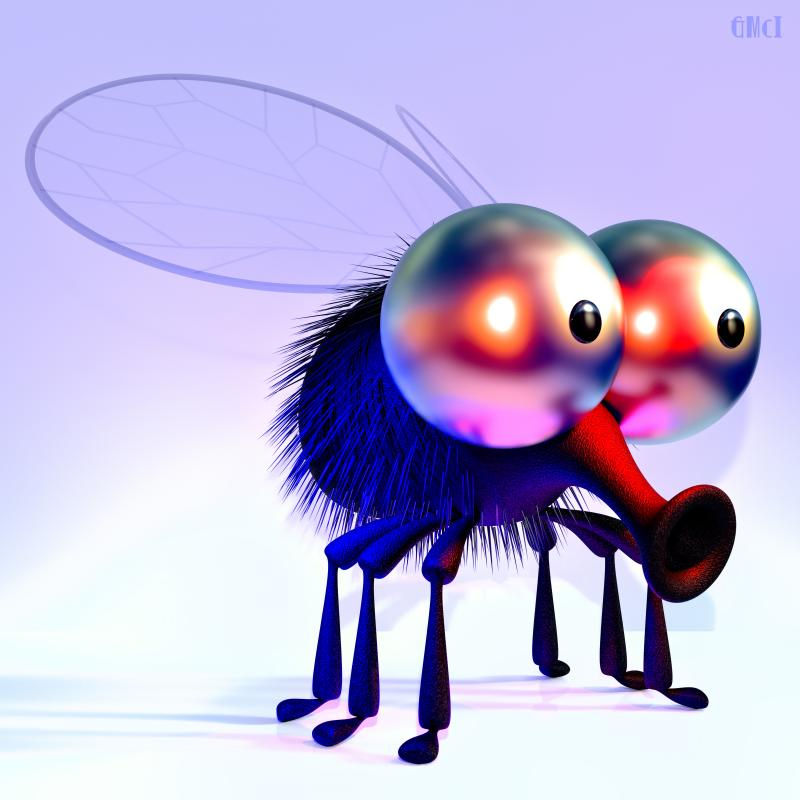 Toon Fly 2